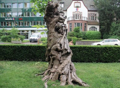 Trompetenbaum 3