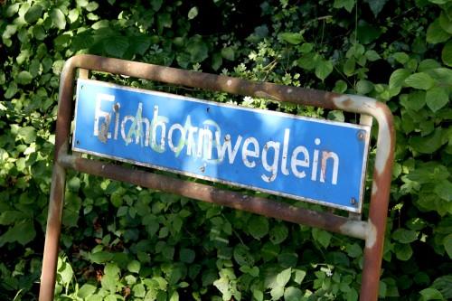 Eichhornweglein