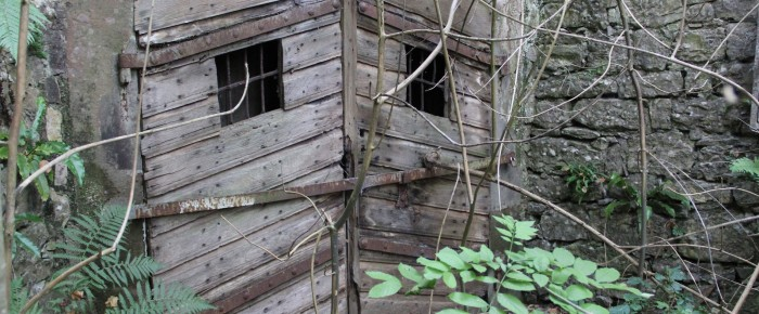 gesichtet #141: Das menschenfressende Wenkentier lauert im Bierkeller