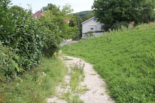 Fuchsweg 6
