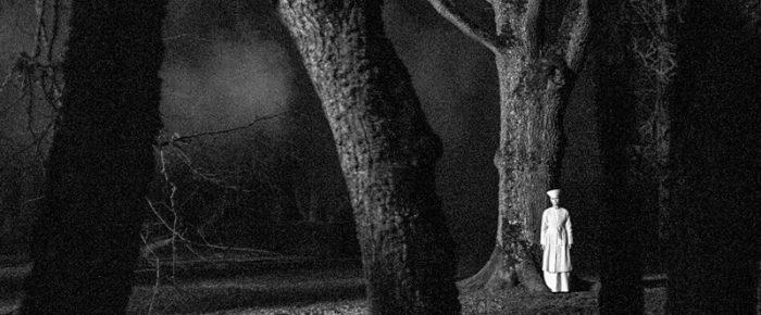 Im Banne des Kratt – Rainer Sarnets «November»
